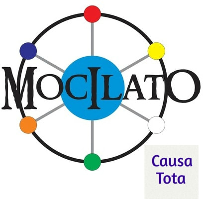 Blog_ Causa Tota